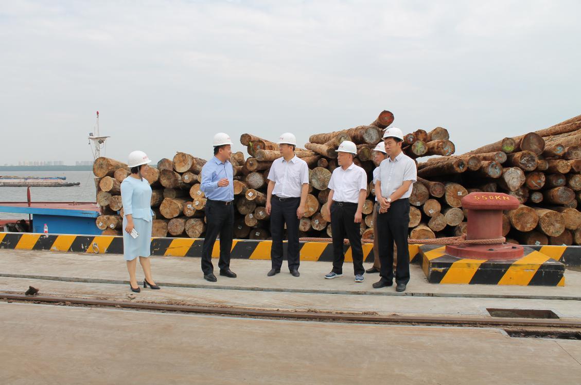 林展考察调研华中国际金沙城中心注册家具产业园